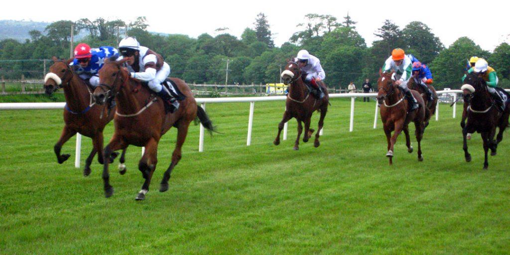 horse racing free 1