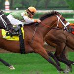 horse racing bonus 2